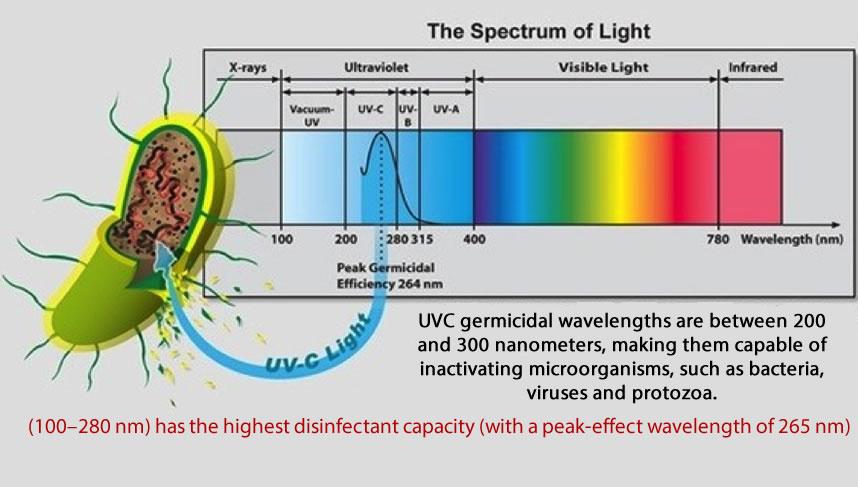 100–280nm-has-highest-disinfectant-capacity-peak-effect-wavelength-of-265-nm